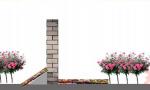 鸡鸣寺樱花路太短 东大教授建议打造环城墙带樱花大道