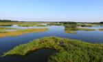 辽宁2020年前将再新增一处湿地公园