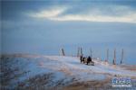 """专访:""""冰上丝绸之路""""为北极发展注入新动能"""