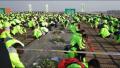 郑州市全面整治建成区楼顶 屋顶绿化每平方米奖补300元