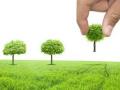 沈阳未来三年计划完成造林面积两万公顷