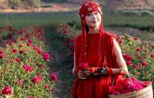 杨丽萍现身玫瑰谷