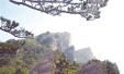 河南省十大最具影响力景区揭晓:老界岭上榜