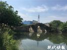 明代古桥成危桥:桥面长满杂草 旁边还堆满生活垃圾