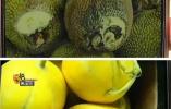 """市场上的""""烂水果""""去哪了?知道答案后,容我先吐一会儿……"""