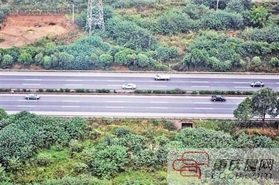 高速公路网络进一步完善 推动取消高速省界收费站