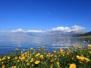 湖北今年将开行多趟援疆旅游专列、包机