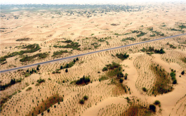 Private firms help push back deserts and poverty