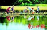 中国农民丰收节是否放假、高速免费吗?答案在这里
