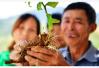 山东:今年将基本完成17.2万省扶贫标准贫困人口脱贫