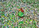塑料瓶运往孟加拉
