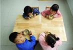 幼儿园的烂番茄:谁来保障孩子的餐食安全