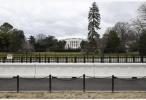 特朗普宣布美国进入国家紧急状态