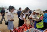河南三门峡湖滨区集中开展帮扶日活动