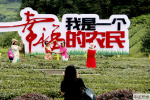 贵州湄潭:茶旅一体走新路 脱贫致富奔小康
