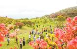 我国植保现状:近200个植物园收集保存2万个物种