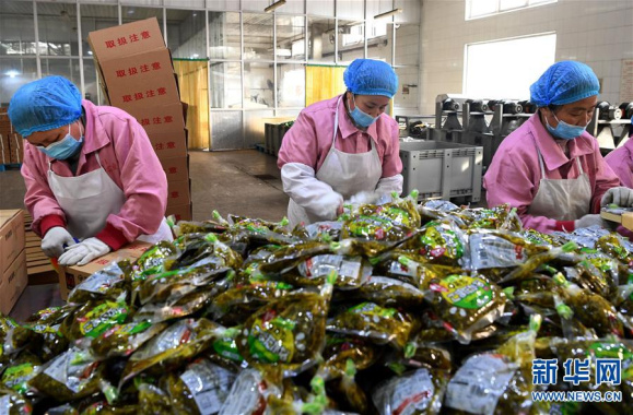 河南郏县:乡村复工生产忙