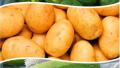 11月份中国寿光蔬菜价格指数上涨 同比上涨四成
