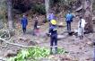 加纳一瀑布旁大树倒塌 致31名高中生死伤
