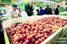 三月中旬肉禽蛋价格整体回升 城区活禽店开始营业