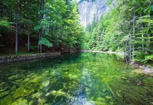 翡翠湖:奥地利 奥地利翡翠湖座落在特拉古斯霍赫史瓦山脚下.