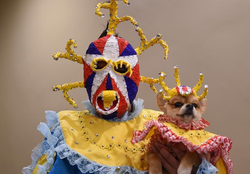 第14届纽约宠物时装秀:宠物也时尚