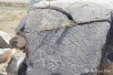 内蒙古达茂旗发现匈奴与东胡之战时的阿拉伯战马岩画