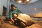 北京动物园动物过冬有妙招