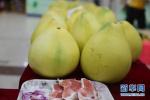 一个柚子等于六味药!全家大小的小毛病都用得上