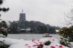 这18个在杭州抓拍的瞬间 美过所有雪后西湖的照片