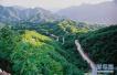 驻马店市确山县砥砺前行 推动创建国家森林城市