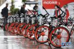"""共享单车""""免费""""时代结束!包月20包年240"""