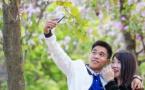 紫荆花树下的浪漫