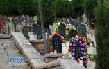 山东每年死亡人数约70万人 经营性公墓已接近饱和