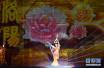 第36届中国洛阳牡丹文化节开幕 游客徜徉花海