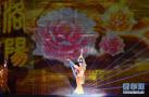 第36届洛阳牡丹文化节开幕