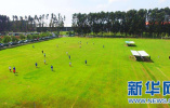 石家庄体育公园足球场免费对外开放无需预约