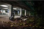 印尼强震死亡人数升至142人 被困中国游客安全撤离暂无伤亡