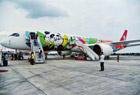 熊猫客机首飞北京
