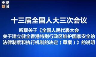 王晨作关于建立健全香港维护国家安全法律制度和执行机制决定(草案)的说明