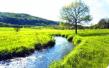 十三五规划:大连加强生态环境治理 推进绿色循环低碳发展