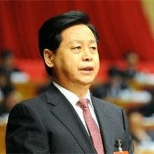2013年度黑龙江省政府信息公开工作报告