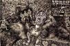 浙大新闻学女博士 100幅画描绘《百年孤独》