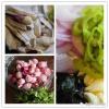 龙泉鳅煲——麦香浓每周一菜