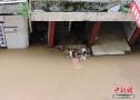 四川秋汛房屋被淹