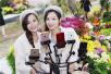 第六届中国菊花插花艺术展开幕 双胞胎姐妹直播引爆网络
