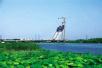 这座贾鲁河大桥年底开通 郑州又添个新地标