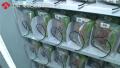 南京街头惊现螃蟹售货机 每只28元一天能卖两三百只