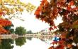 秋意浓赏红叶 临夏美的惊心动魄的地方可以去