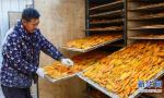 """日照""""地瓜界""""网红网上卖红薯干 年售300万元"""